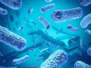 бактерии в воде из скважины